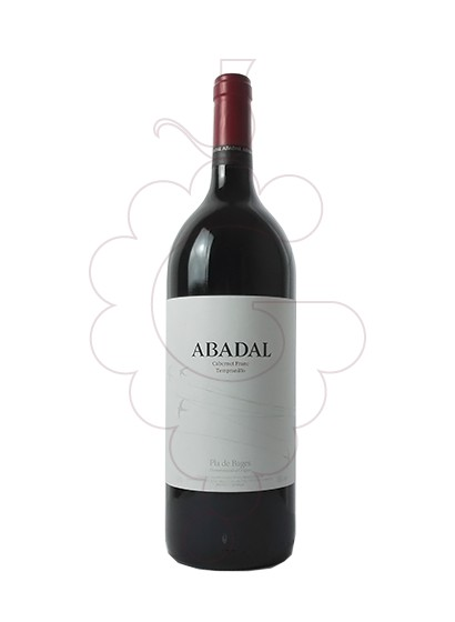 Photo Abadal Franc Magnum red wine