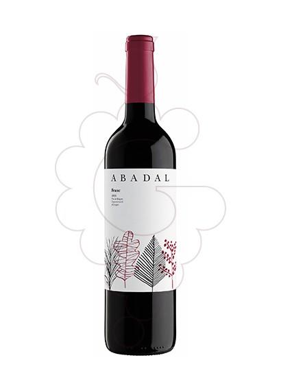 Photo Abadal Franc red wine