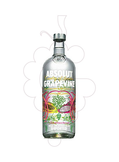 Photo Vodka Absolut Grapevine