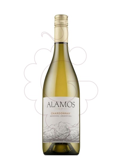 Photo Alamos Chardonnay white wine