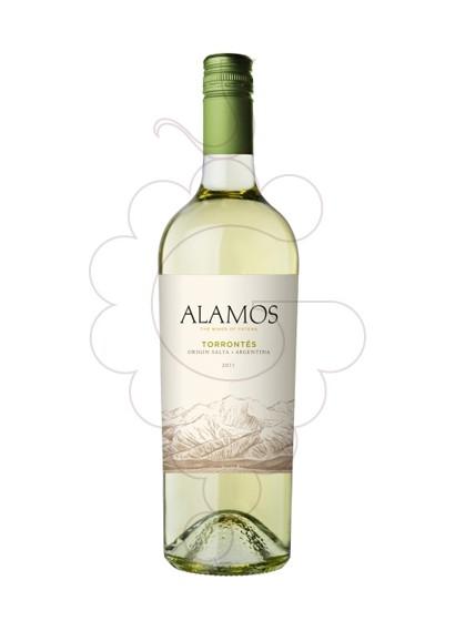 Photo Alamos Torrontés white wine