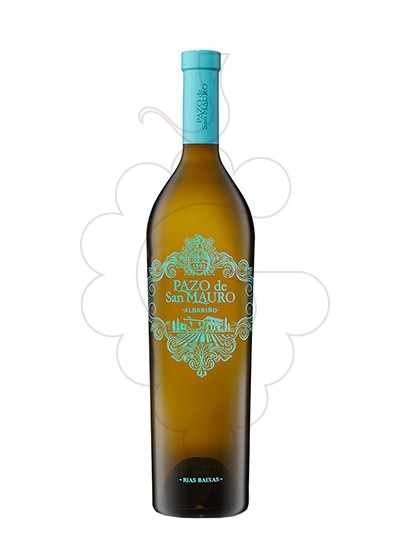 Photo Albariño Pazo San Mauro Magnum white wine