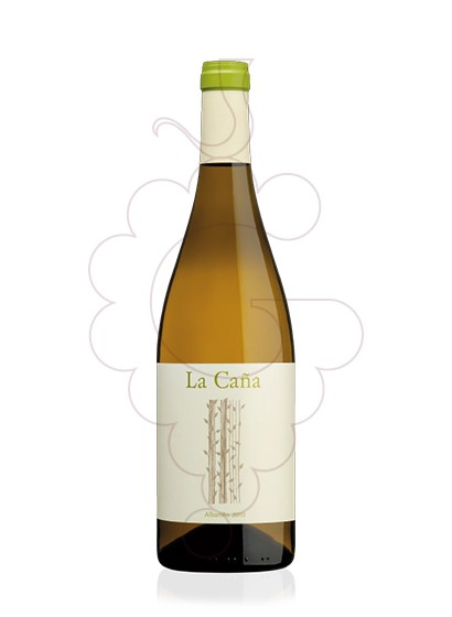 Photo Albariño la Caña white wine