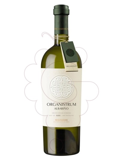 Photo Albariño Organistrum white wine