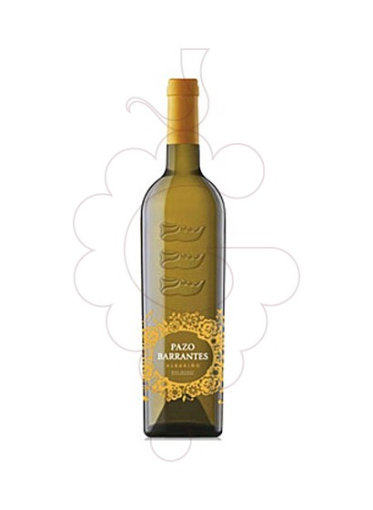 Photo Albariño Pazo de Barrantes white wine