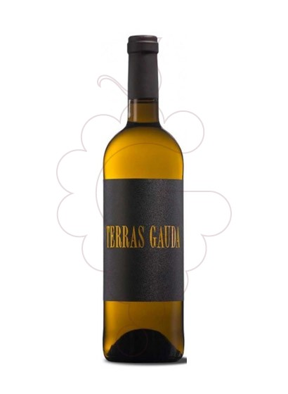 Photo Albariño Terras Gauda Black Label white wine