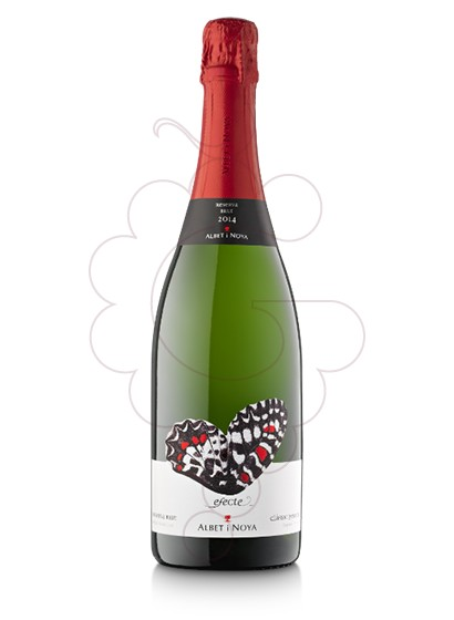 Photo Albet i Noya Brut sparkling wine