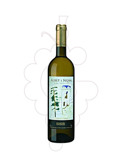 Photo Albet i Noya Chardonnay Col.lecció white wine