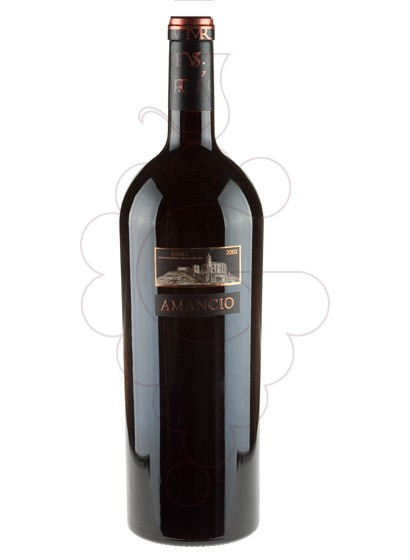 Photo Amancio Magnum red wine