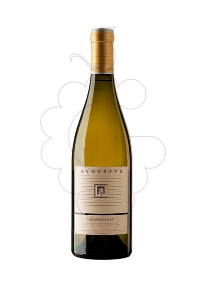 Photo Augustus Chardonnay white wine