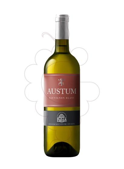 Photo Austum Sauvignon Blanc white wine