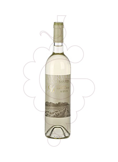 Photo Avrvm Blanc white wine