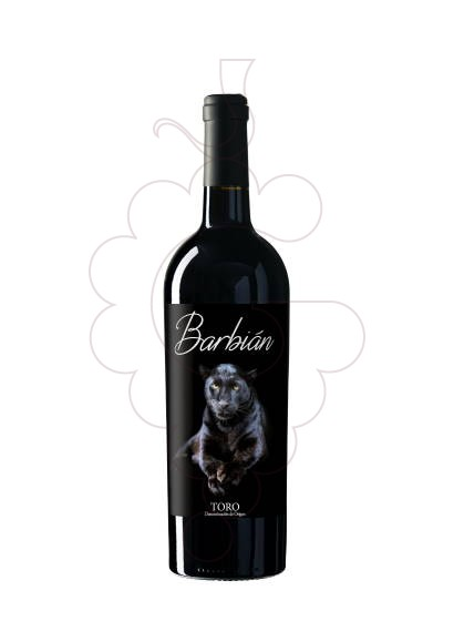 Photo Barbián Roble red wine