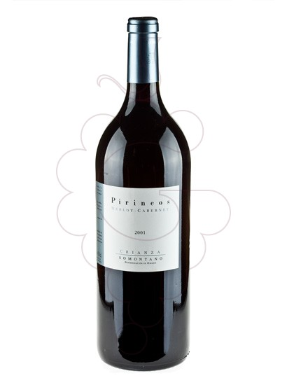 Photo Bodega Pirineos Merlot Cabernet Magnum red wine