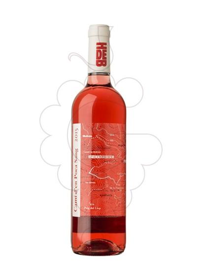 Photo Camí d'en Poca Sang rosé wine