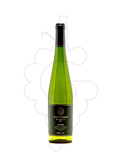 Photo Can Feixes Selecció white wine
