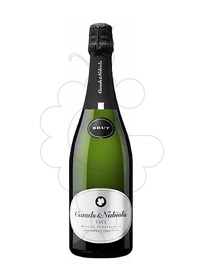Photo Canals Nubiola Plata Brut sparkling wine