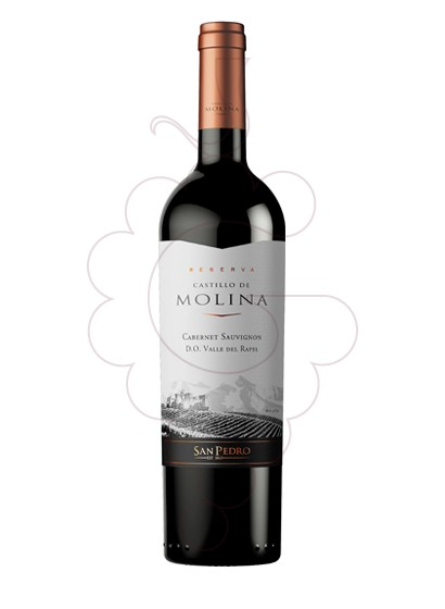 Photo Castillo de Molina Reserva red wine