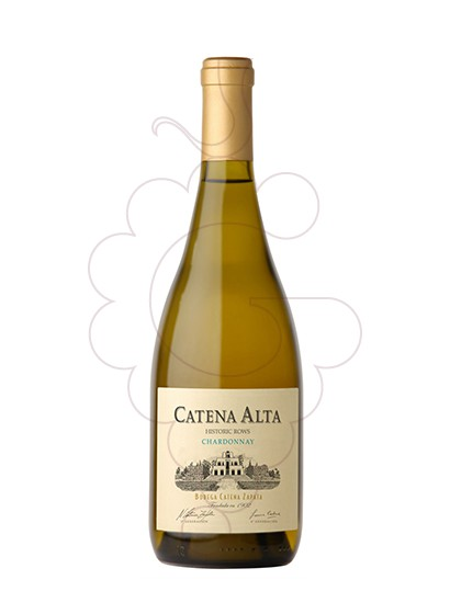 Photo Catena Alta Chardonnay  white wine
