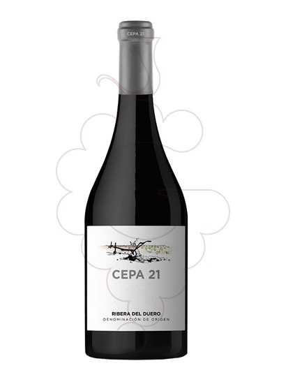 Photo Cepa 21 red wine