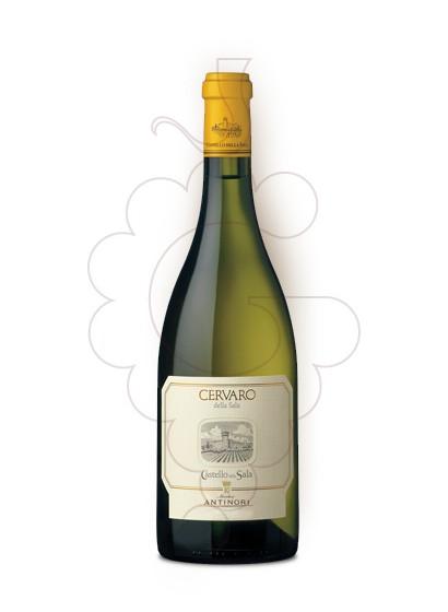 Photo Antinori Cervaro della Sala white wine