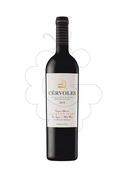 Photo Red Cérvoles red wine