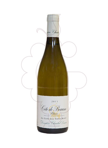 Photo Chantal Lescure Cote de Beaune  white wine