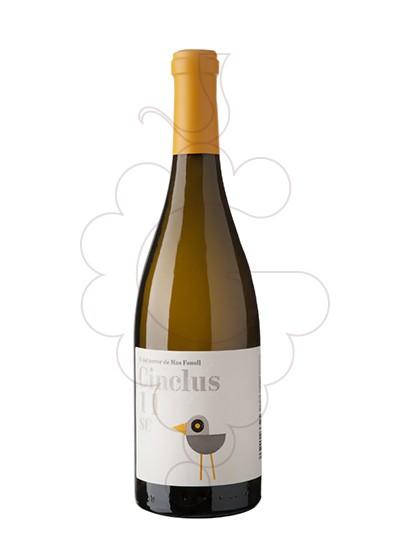 Photo Cinclus white wine