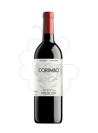 Photo Corimbo red wine