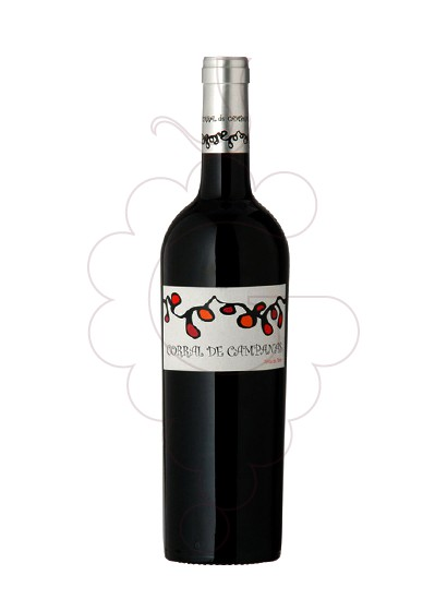 Photo Corral de Campanas Magnum red wine
