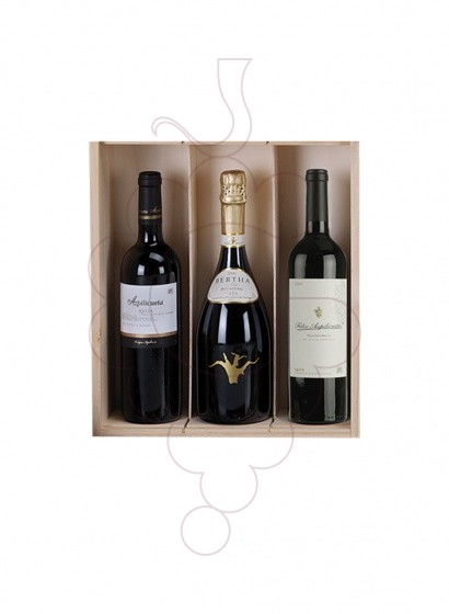 Photo Christmas boxes 2 Bottles Pack of Cava