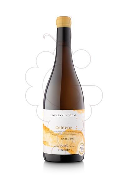 Photo Cultivare Xarel·lo white wine