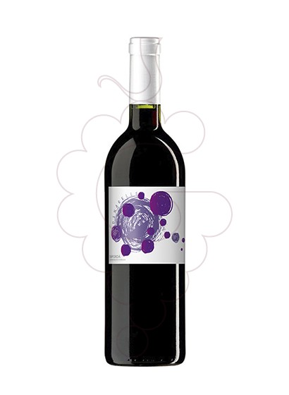 Photo Dinarells Negre Jove red wine