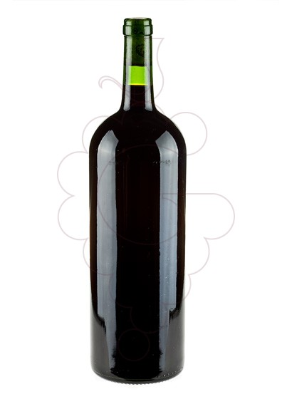 Photo Dominio de Eguren Magnum red wine