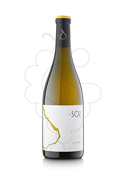 Photo -SO2 white wine