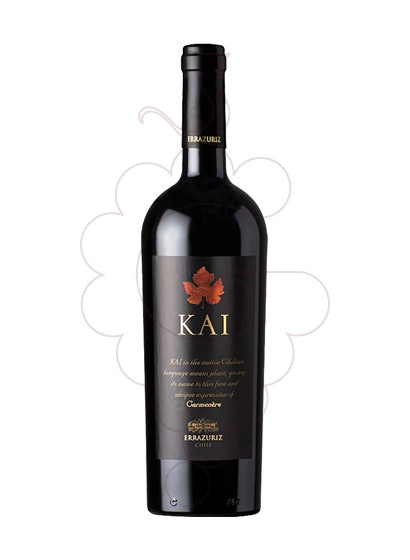 Photo Errazúriz Kai red wine