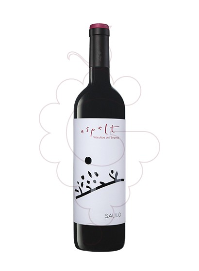 Photo Espelt Saulo  red wine