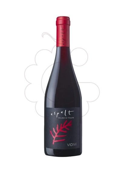Photo Espelt Vidivi Magnum red wine