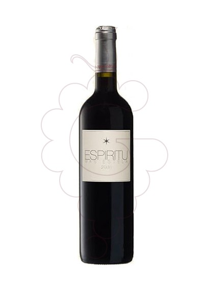 Photo Espiritu Mas Estela red wine