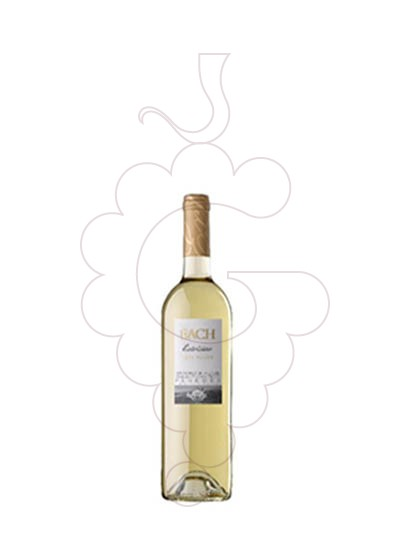 Photo Sweet White Bach (mini) white wine