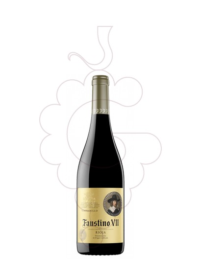 Photo Faustino VII Negre (mini) red wine