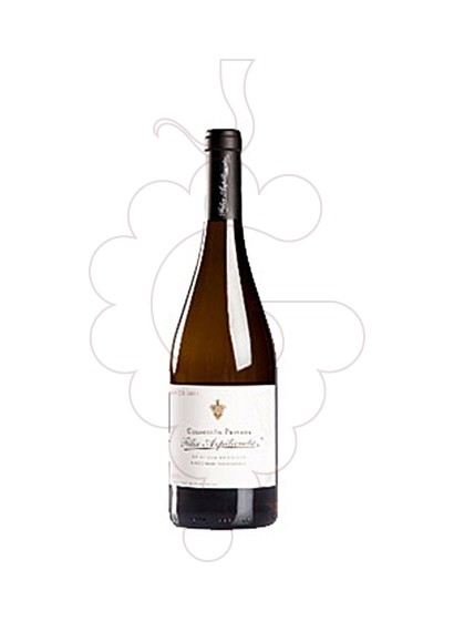 Photo Felix Azpilicueta Colección Privada Blanco white wine