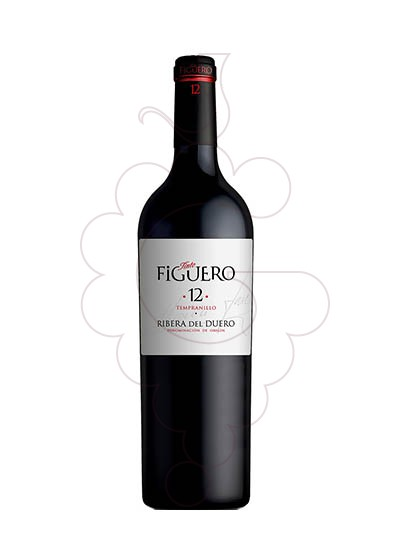 Photo Figuero 12 Meses Crianza red wine