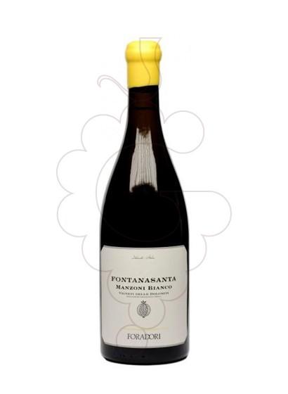Photo Foradori Fontanasanta Manzoni white wine