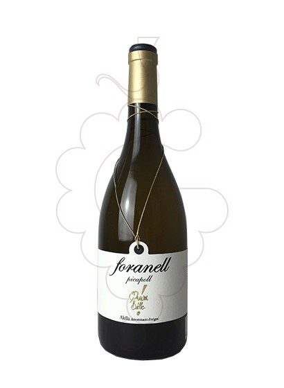 Photo Foranell Picapoll white wine