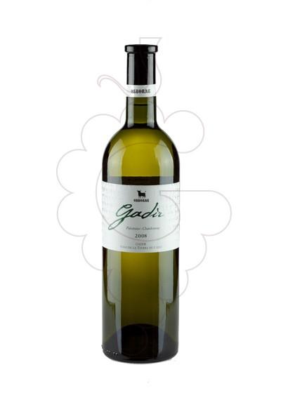 Photo Gadir Blanc white wine