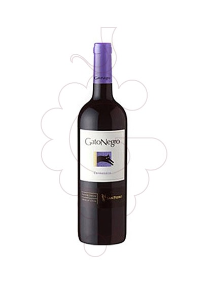 Photo Gato Negro Carmenere  red wine