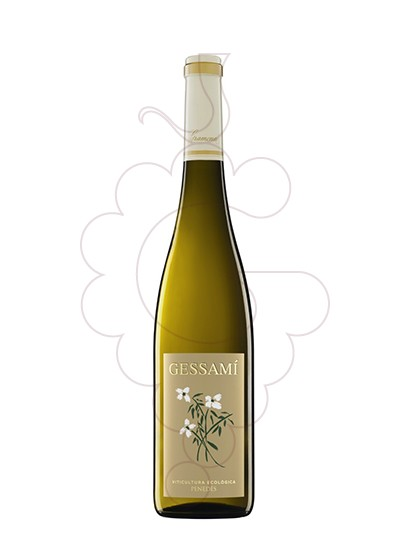 Photo Gramona Gessami (mini) white wine