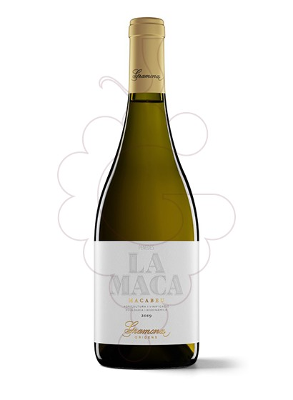 Photo Gramona La Maca white wine