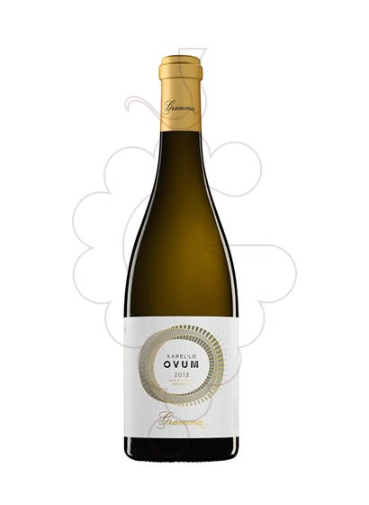 Photo Gramona Ovum Xarel·lo white wine